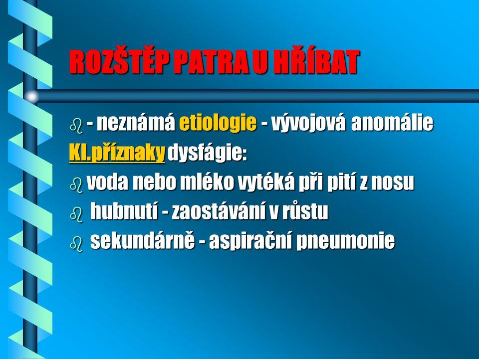 ROZŠTĚP PATRA U HŘÍBAT b - neznámá etiologie - vývojová anomálie Kl.příznaky dysfágie: b voda nebo mléko vytéká při pití z nosu b hubnutí - zaostávání