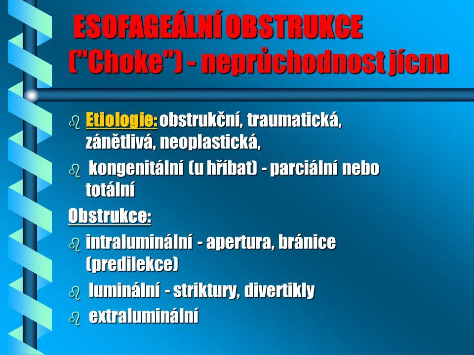 ESOFAGEÁLNÍ OBSTRUKCE ( Choke ) - neprůchodnost jícnu ESOFAGEÁLNÍ OBSTRUKCE ( Choke ) - neprůchodnost jícnu b Etiologie: obstrukční, traumatická, zánětlivá, neoplastická, b kongenitální (u hříbat) - parciální nebo totální Obstrukce: b intraluminální - apertura, bránice (predilekce) b luminální - striktury, divertikly b extraluminální