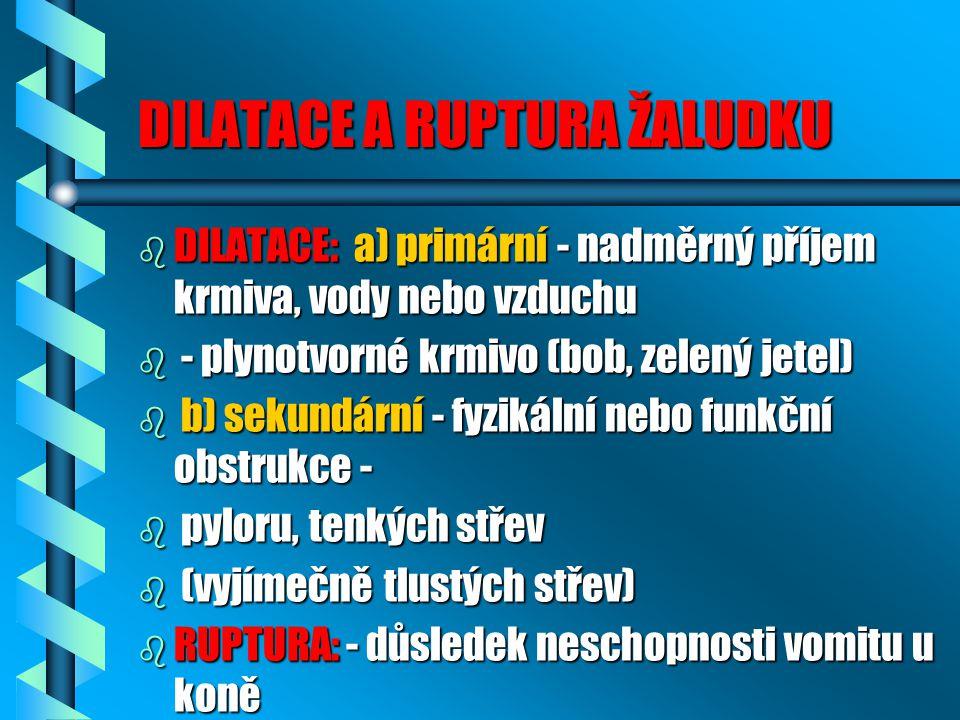 DILATACE A RUPTURA ŽALUDKU b DILATACE: a) primární - nadměrný příjem krmiva, vody nebo vzduchu b - plynotvorné krmivo (bob, zelený jetel) b b) sekundární - fyzikální nebo funkční obstrukce - b pyloru, tenkých střev b (vyjímečně tlustých střev) b RUPTURA: - důsledek neschopnosti vomitu u koně