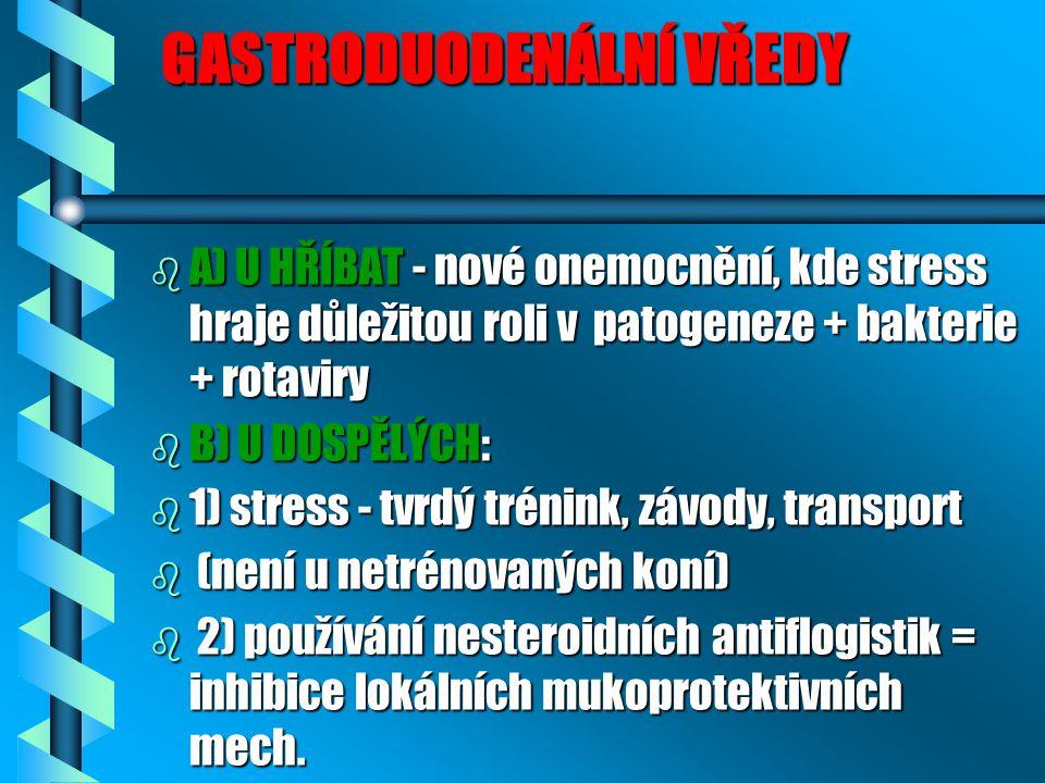 GASTRODUODENÁLNÍ VŘEDY GASTRODUODENÁLNÍ VŘEDY b A) U HŘÍBAT - nové onemocnění, kde stress hraje důležitou roli v patogeneze + bakterie + rotaviry b B)