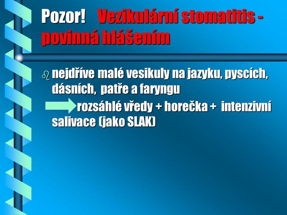 Pozor! Vezikulární stomatitis - povinná hlášením b nejdříve malé vesikuly na jazyku, pyscích, dásních, patře a faryngu rozsáhlé vředy + horečka + inte