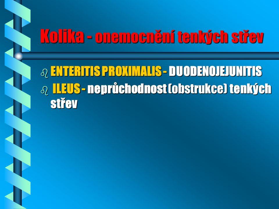 Kolika - onemocnění tenkých střev b ENTERITIS PROXIMALIS - DUODENOJEJUNITIS b ILEUS - neprůchodnost (obstrukce) tenkých střev