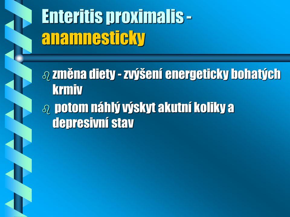 Enteritis proximalis - anamnesticky b změna diety - zvýšení energeticky bohatých krmiv b potom náhlý výskyt akutní koliky a depresivní stav