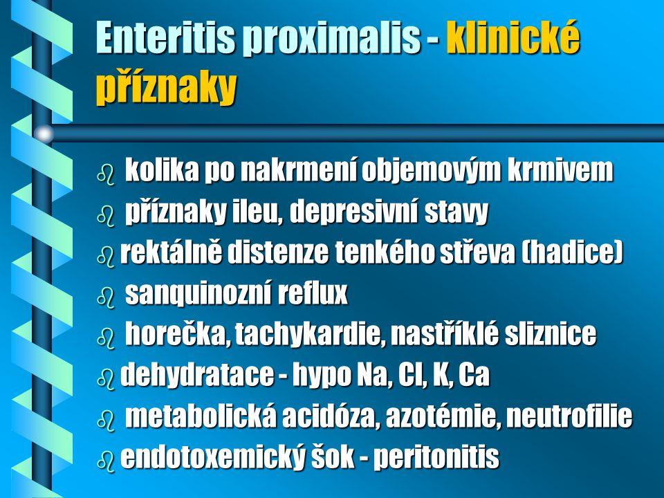 Enteritis proximalis - klinické příznaky b kolika po nakrmení objemovým krmivem b příznaky ileu, depresivní stavy b rektálně distenze tenkého střeva (hadice) b sanquinozní reflux b horečka, tachykardie, nastříklé sliznice b dehydratace - hypo Na, Cl, K, Ca b metabolická acidóza, azotémie, neutrofilie b endotoxemický šok - peritonitis