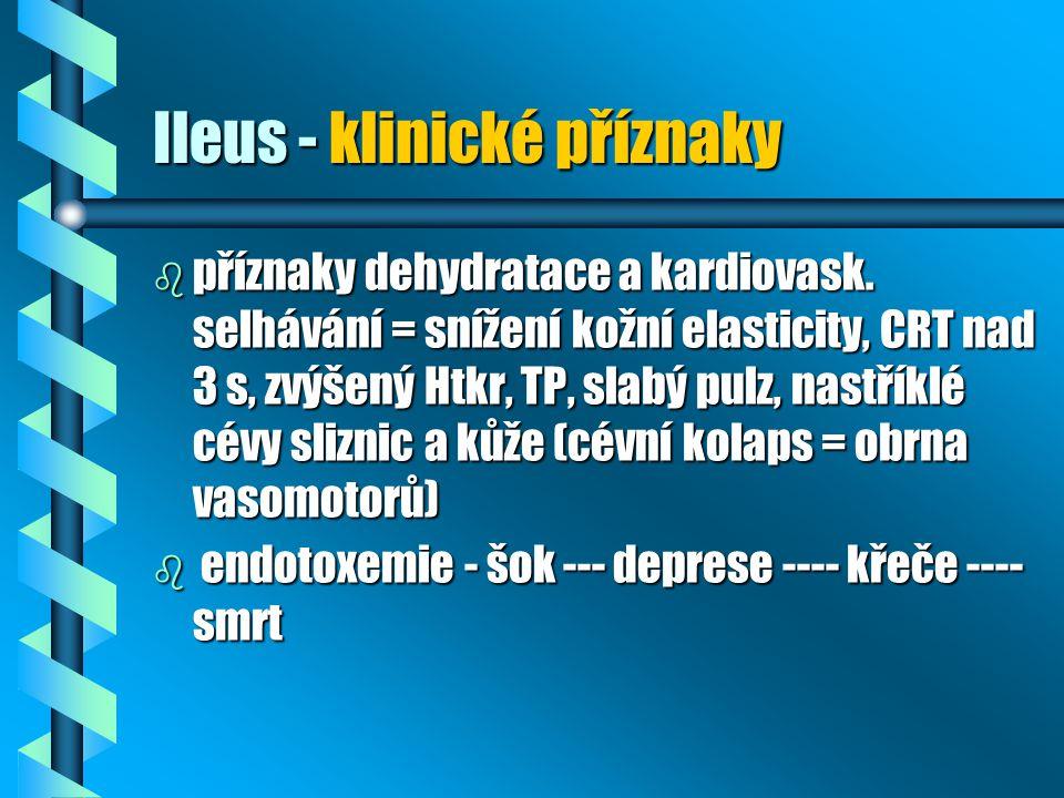 Ileus - klinické příznaky b příznaky dehydratace a kardiovask. selhávání = snížení kožní elasticity, CRT nad 3 s, zvýšený Htkr, TP, slabý pulz, nastří