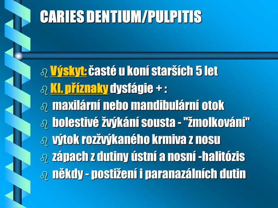 CARIES DENTIUM/PULPITIS b Výskyt: časté u koní starších 5 let b Kl. příznaky dysfágie + : b maxilární nebo mandibulární otok b bolestivé žvýkání soust