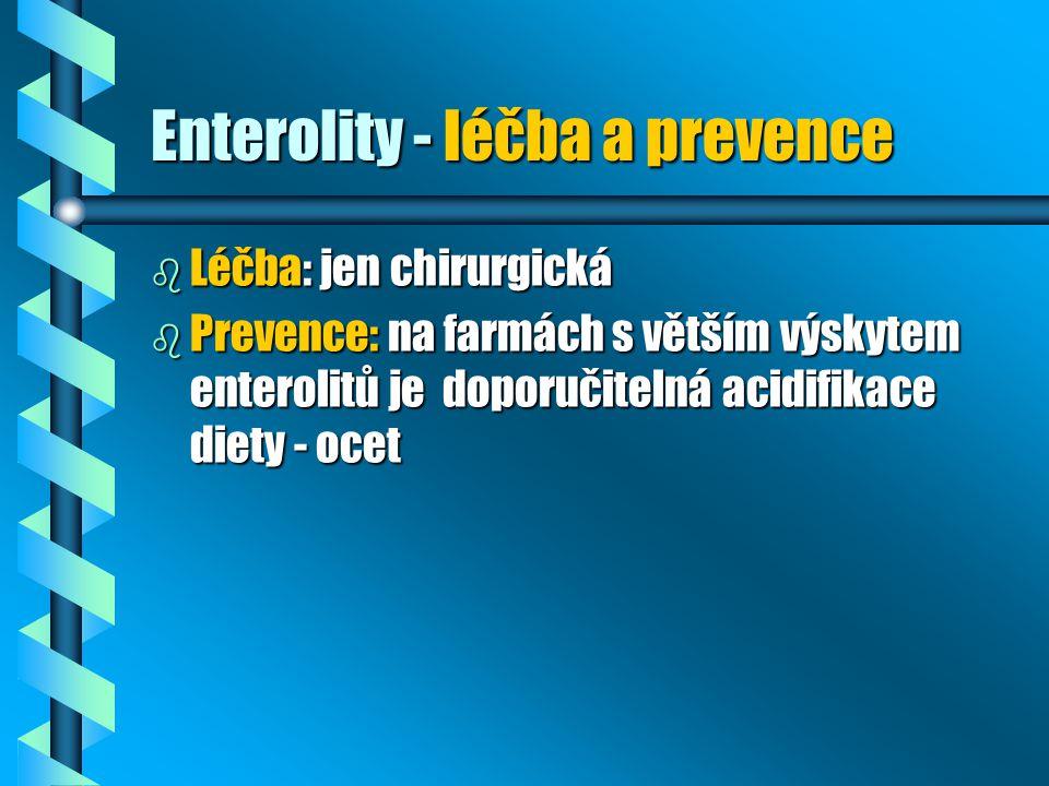 Enterolity - léčba a prevence b Léčba: jen chirurgická b Prevence: na farmách s větším výskytem enterolitů je doporučitelná acidifikace diety - ocet