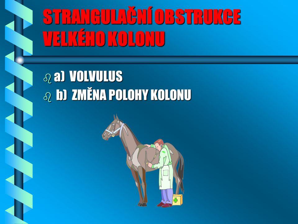 STRANGULAČNÍ OBSTRUKCE VELKÉHO KOLONU b a) VOLVULUS b b) ZMĚNA POLOHY KOLONU