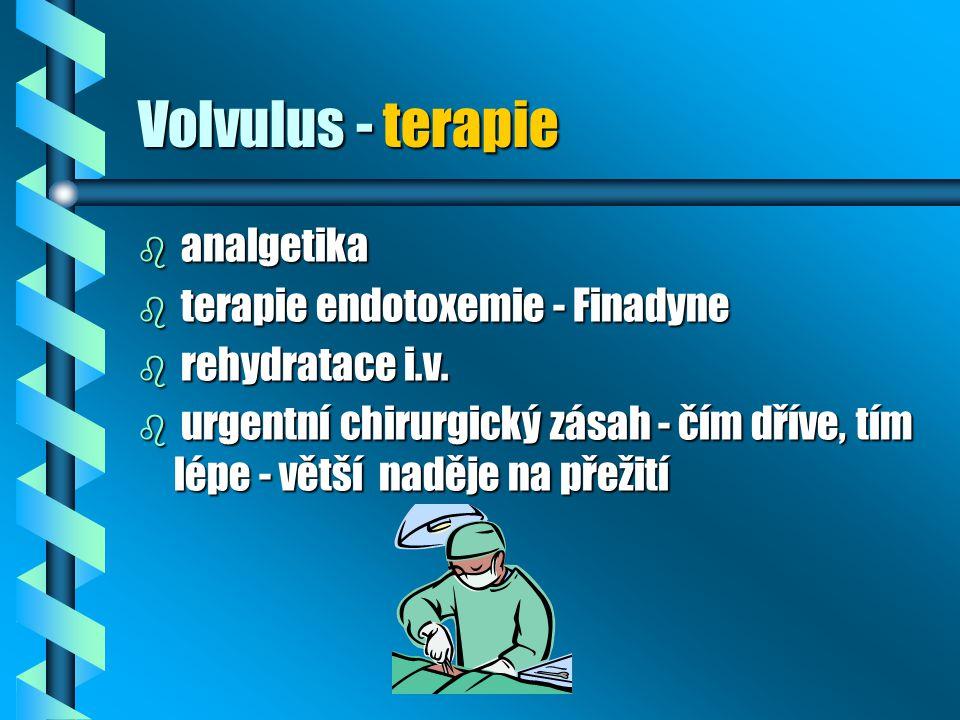 Volvulus - terapie b analgetika b terapie endotoxemie - Finadyne b rehydratace i.v. b urgentní chirurgický zásah - čím dříve, tím lépe - větší naděje