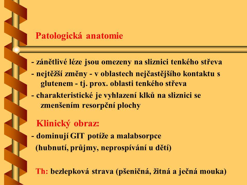 Patologická anatomie - zánětlivé léze jsou omezeny na sliznici tenkého střeva - nejtěžší změny - v oblastech nejčastějšího kontaktu s glutenem - tj. p