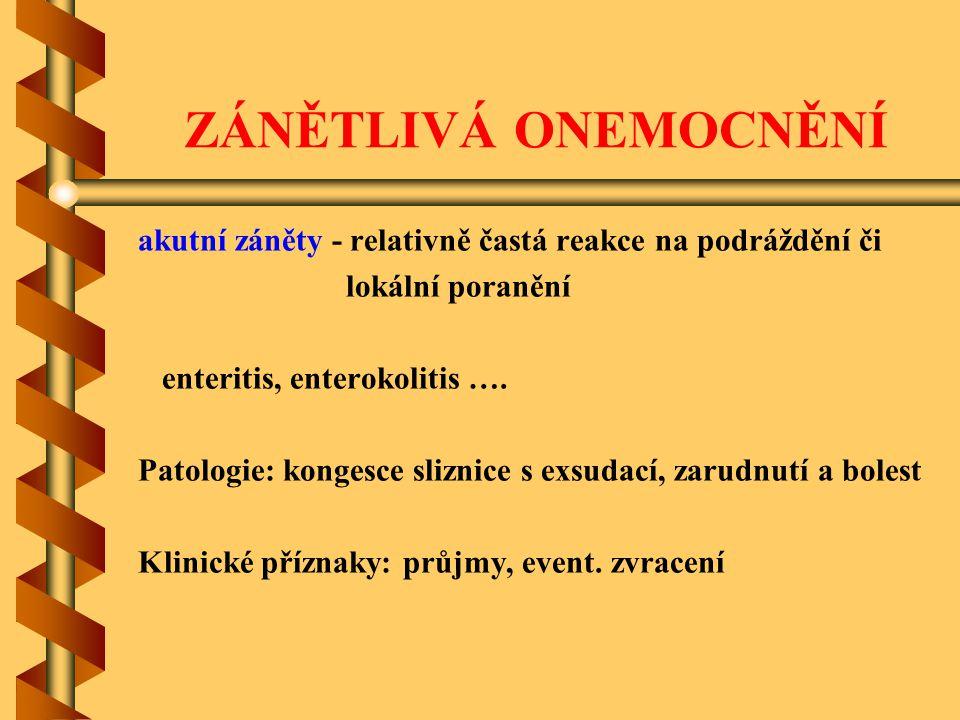 ZÁNĚTLIVÁ ONEMOCNĚNÍ akutní záněty - relativně častá reakce na podráždění či lokální poranění enteritis, enterokolitis …. Patologie: kongesce sliznice