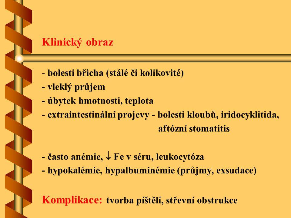 Klinický obraz - bolesti břicha (stálé či kolikovité) - vleklý průjem - úbytek hmotnosti, teplota - extraintestinální projevy - bolesti kloubů, iridoc