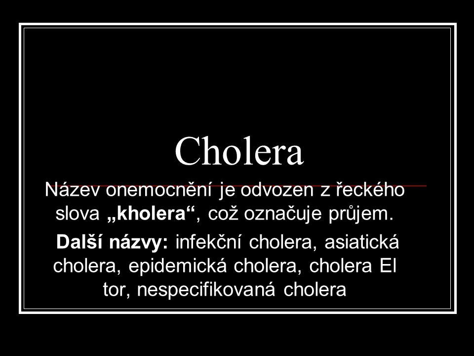 """Cholera Název onemocnění je odvozen z řeckého slova """"kholera"""", což označuje průjem. Další názvy: infekční cholera, asiatická cholera, epidemická chole"""