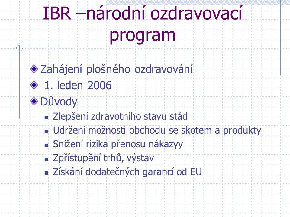 IBR –národní ozdravovací program Zahájení plošného ozdravování 1. leden 2006 Důvody Zlepšení zdravotního stavu stád Udržení možnosti obchodu se skotem
