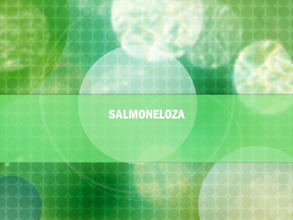 Co je to salmoneloza .