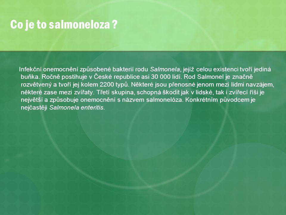 Preventivní epidemická opatření * zajistit kvalitní pitnou vodu a dbát technického stavu vodovodní sítě a studní * dbát hygienické likvidace lidských výmětů a odpadků * dodržovat hygienické požadavky při výrobě, transportu, skladování a distribuci potravin * aktivně vyhledávat nosiče břišního tyfu a udržovat nad nimi dohled * nezaměstnávat osoby v potravinářství bez platného potravinářského průkazu a bez znalosti hygienického minima * osvětou působit na pracovníky s podrobením se mnimořádné lékařské prohlídce v případě výskytu nehlášeného průjmového onemocnění v rodině nebo okolí pracovníka * v rodinách kde žije nosič lze děti chránit též očkováním.