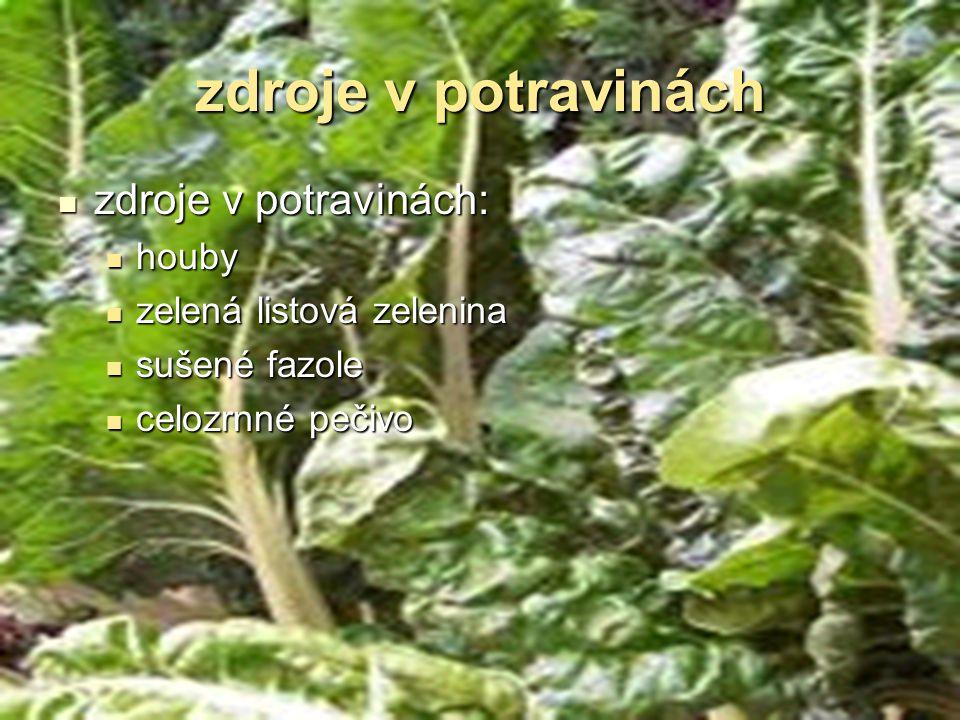 zdroje v potravinách zdroje v potravinách: zdroje v potravinách: houby houby zelená listová zelenina zelená listová zelenina sušené fazole sušené fazo