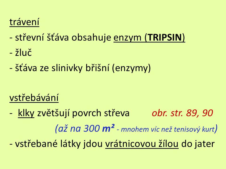 trávení - střevní šťáva obsahuje enzym (TRIPSIN) - žluč - šťáva ze slinivky břišní (enzymy) vstřebávání -klky zvětšují povrch střeva obr.