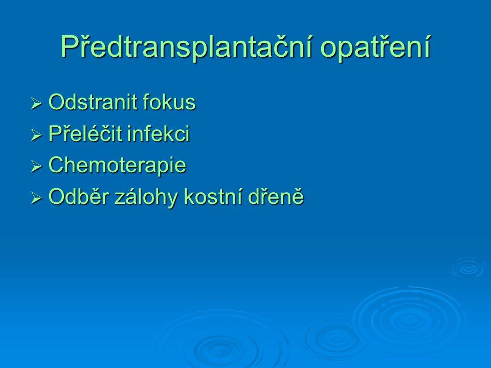 Předtransplantační opatření  Odstranit fokus  Přeléčit infekci  Chemoterapie  Odběr zálohy kostní dřeně