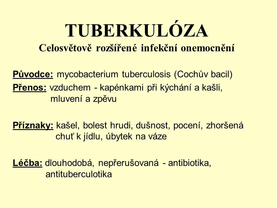 TUBERKULÓZA Celosvětově rozšířené infekční onemocnění Původce: mycobacterium tuberculosis (Cochův bacil) Přenos: vzduchem - kapénkami při kýchání a ka