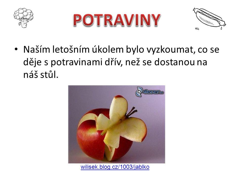 Naším letošním úkolem bylo vyzkoumat, co se děje s potravinami dřív, než se dostanou na náš stůl. wilisek.blog.cz/1003/jablko