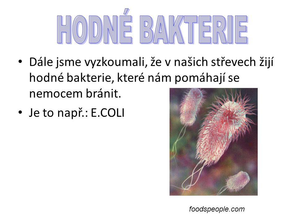 Dále jsme vyzkoumali, že v našich střevech žijí hodné bakterie, které nám pomáhají se nemocem bránit. Je to např.: E.COLI foodspeople.com