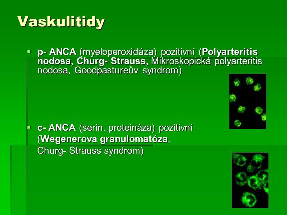 Vaskulitidy  p- ANCA (myeloperoxidáza) pozitivní (Polyarteritis nodosa, Churg- Strauss, Mikroskopická polyarteritis nodosa, Goodpastureův syndrom)  c- ANCA (serin.