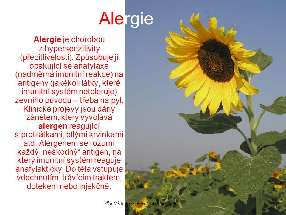 Alergie je chorobou z hypersenzitivity (přecitlivělosti).