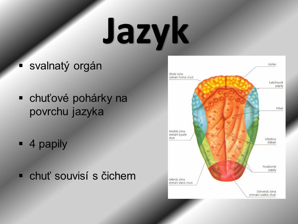 http://anatomie-lidskeho- tela.kvalitne.cz/files/traveni/travici- soustava.pnghttp://anatomie-lidskeho- tela.kvalitne.cz/files/traveni/travici- soustava.png http://www.latinsky.estranky.cz/fotoalbum/t ravici-soustava/travici-soustava/tenke- strevo.png.-.htmlhttp://www.latinsky.estranky.cz/fotoalbum/t ravici-soustava/travici-soustava/tenke- strevo.png.-.html http://www.lidovky.cz/jatra-se-napila-z- fontany-mladi-dzs- /ln_veda.asp?c=A080825_114322_ln_ved a_svhttp://www.lidovky.cz/jatra-se-napila-z- fontany-mladi-dzs- /ln_veda.asp?c=A080825_114322_ln_ved a_sv