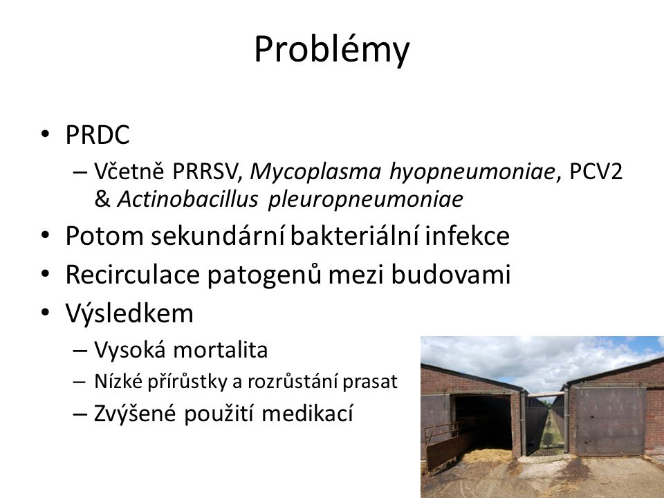Problémy PRDC – Včetně PRRSV, Mycoplasma hyopneumoniae, PCV2 & Actinobacillus pleuropneumoniae Potom sekundární bakteriální infekce Recirculace patoge