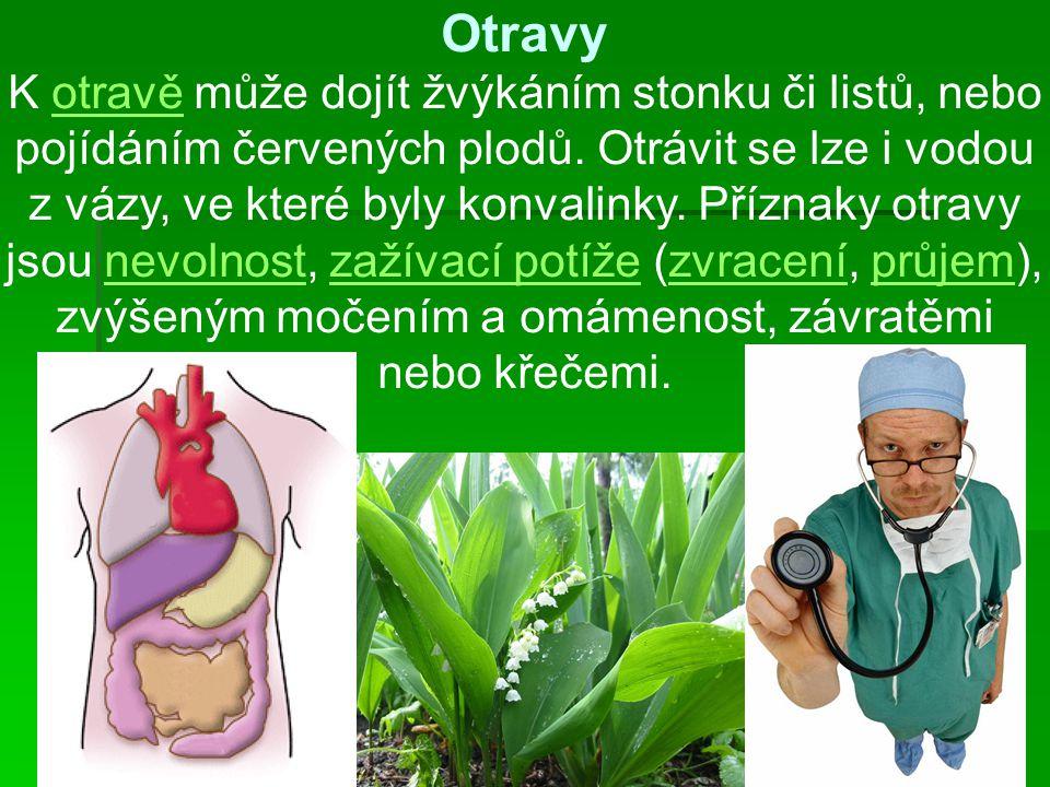Otravy K otravě může dojít žvýkáním stonku či listů, nebo pojídáním červených plodů. Otrávit se lze i vodou z vázy, ve které byly konvalinky. Příznaky