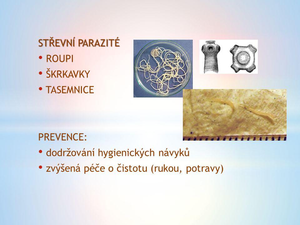 STŘEVNÍ PARAZITÉ ROUPI ŠKRKAVKY TASEMNICE PREVENCE: dodržování hygienických návyků zvýšená péče o čistotu (rukou, potravy)