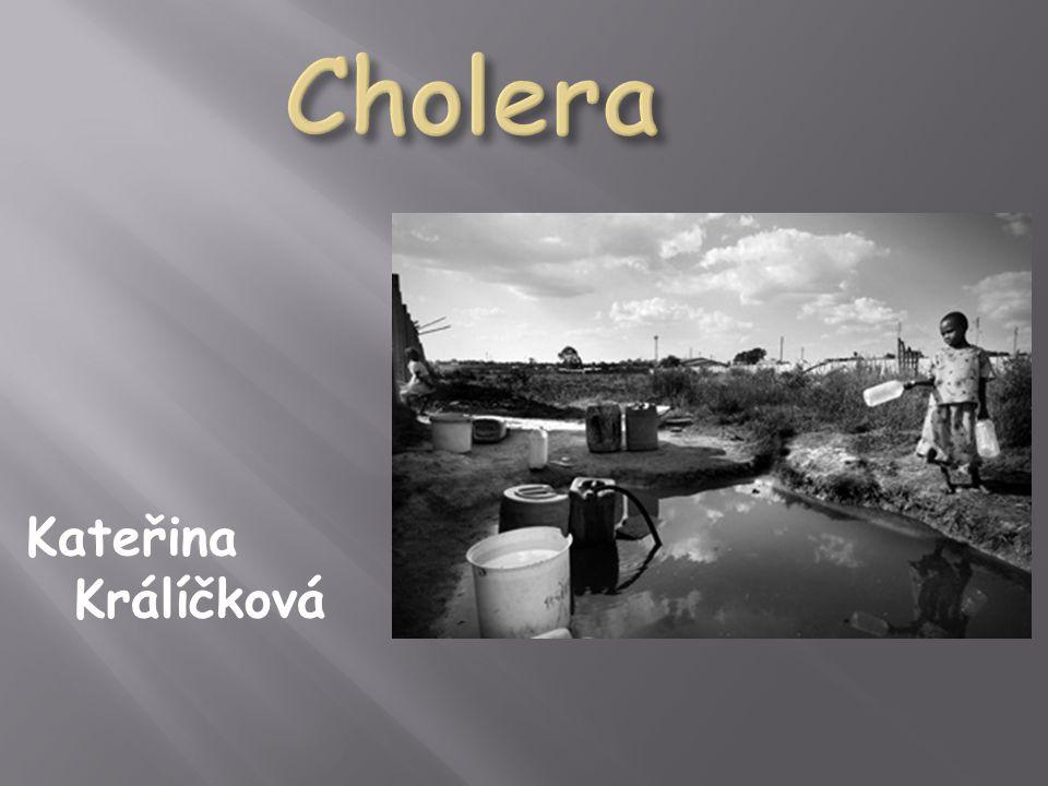  název pochází z hebrejštiny (chole - nemoc, ra - zlá)  popsána byla již ve starověku  v roce 1813 byl Robertem Kochem objeven její původce- bakterie Vibrio cholerae (vyskytuje se ve dvou biotypech- klasický biotyp nebo biotyp El tor, který je odolnější vůči nepříznivým podmínkám prostředí)
