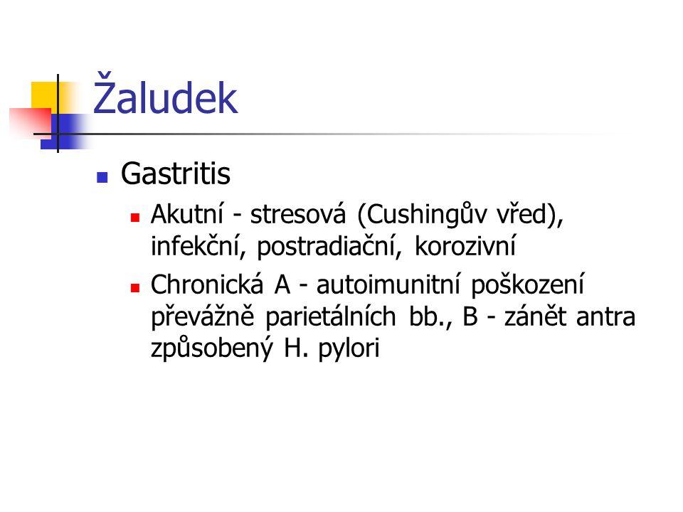 Žaludek Gastritis Akutní - stresová (Cushingův vřed), infekční, postradiační, korozivní Chronická A - autoimunitní poškození převážně parietálních bb.