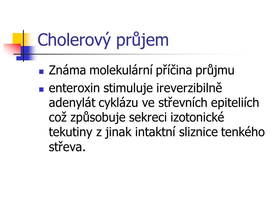 Cholerový průjem Známa molekulární příčina průjmu enteroxin stimuluje ireverzibilně adenylát cyklázu ve střevních epiteliích což způsobuje sekreci izo
