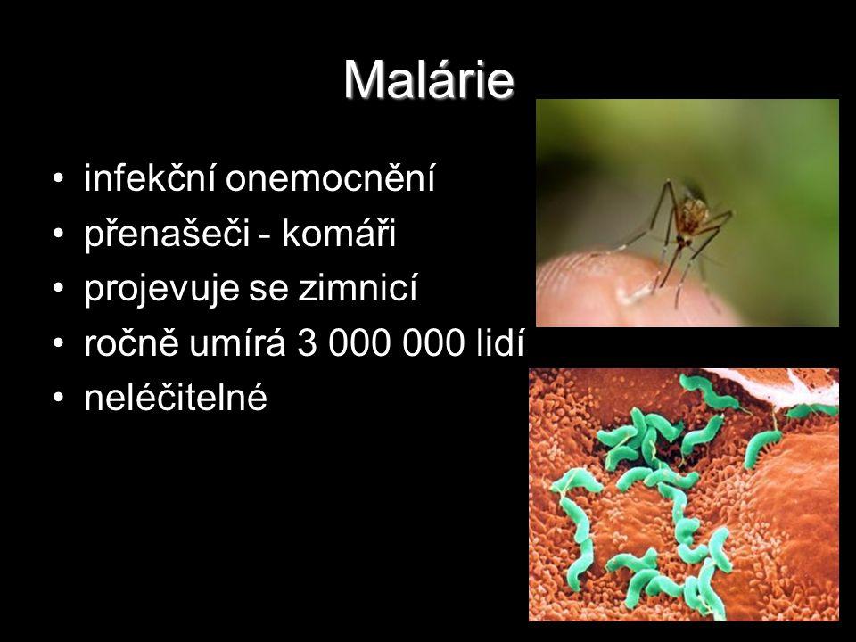 Malárie infekční onemocnění přenašeči - komáři projevuje se zimnicí ročně umírá 3 000 000 lidí neléčitelné
