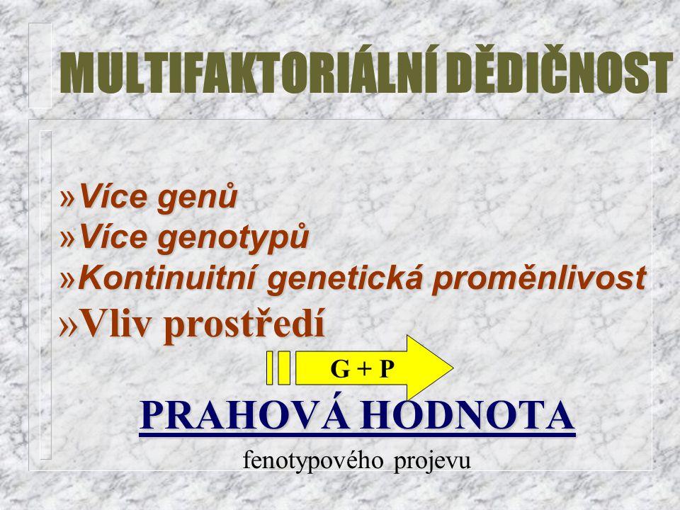 MULTIFAKTORIÁLNÍ DĚDIČNOST »Více genů »Více genotypů »Kontinuitní genetická proměnlivost »Vliv prostředí PRAHOVÁ HODNOTA fenotypového projevu G + P