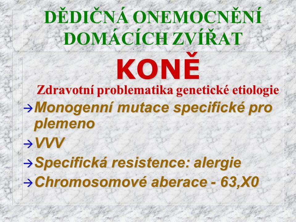 DĚDIČNÁ ONEMOCNĚNÍ DOMÁCÍCH ZVÍŘATKONĚ Zdravotní problematika genetické etiologie à Monogenní mutace specifické pro plemeno à VVV à Specifická resiste