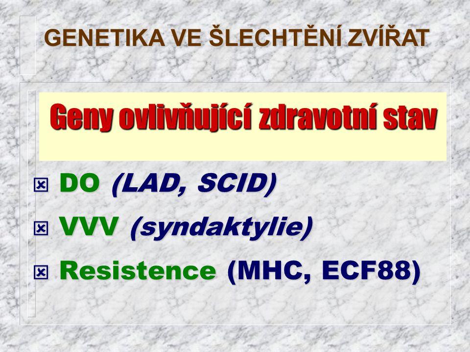 ý DO (LAD, SCID) ý VVV (syndaktylie) ý Resistence (MHC, ECF88) GENETIKA VE ŠLECHTĚNÍ ZVÍŘAT Geny ovlivňující zdravotní stav