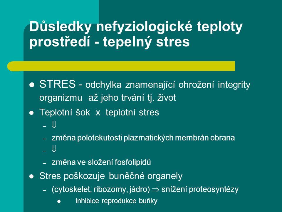 Důsledky nefyziologické teploty prostředí - tepelný stres STRES - odchylka znamenající ohrožení integrity organizmu až jeho trvání tj.