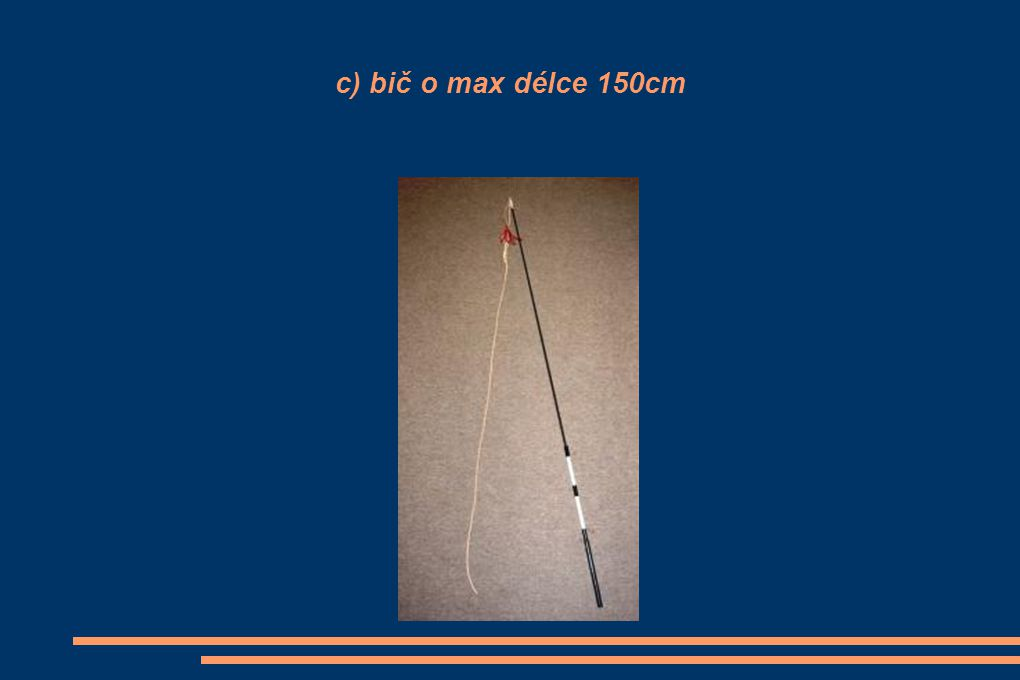 c) bič o max délce 150cm