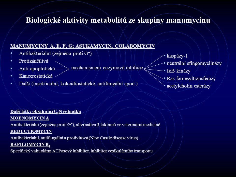 Biologické aktivity metabolitů ze skupiny manumycinu MANUMYCINY A, E, F, G; ASUKAMYCIN, COLABOMYCIN Antibakteriální (zejména proti G + ) Protizánětliv