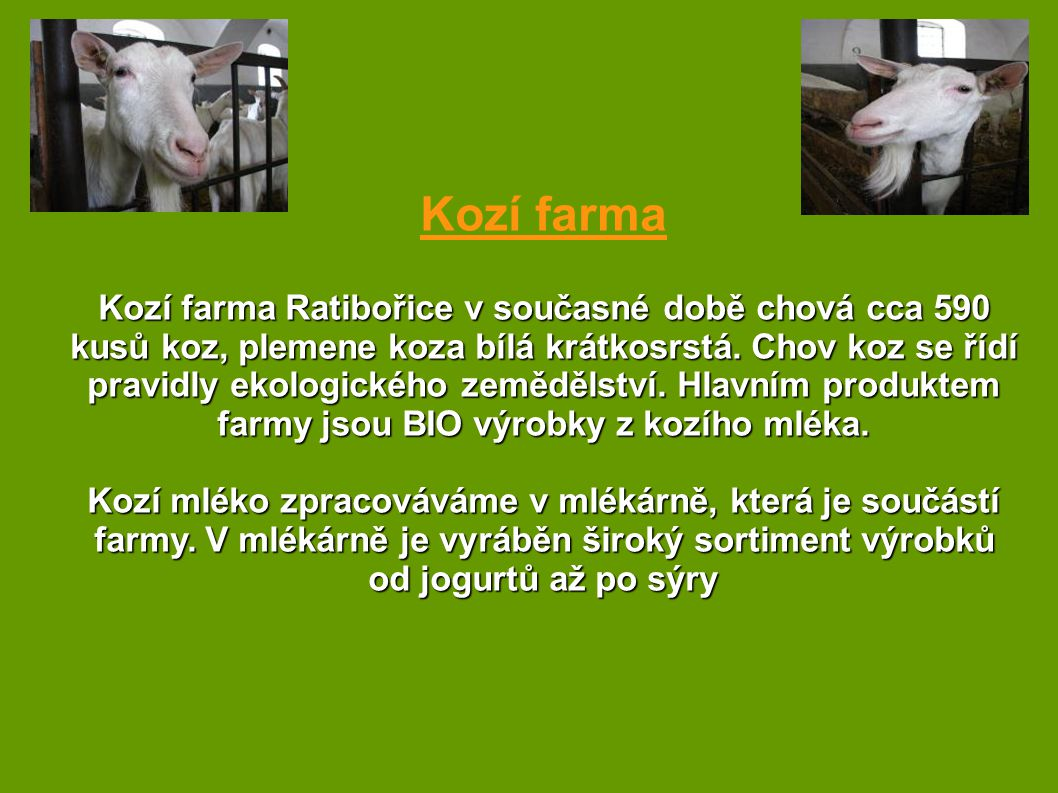 Kozí farma Kozí farma Ratibořice v současné době chová cca 590 kusů koz, plemene koza bílá krátkosrstá. Chov koz se řídí pravidly ekologického zeměděl