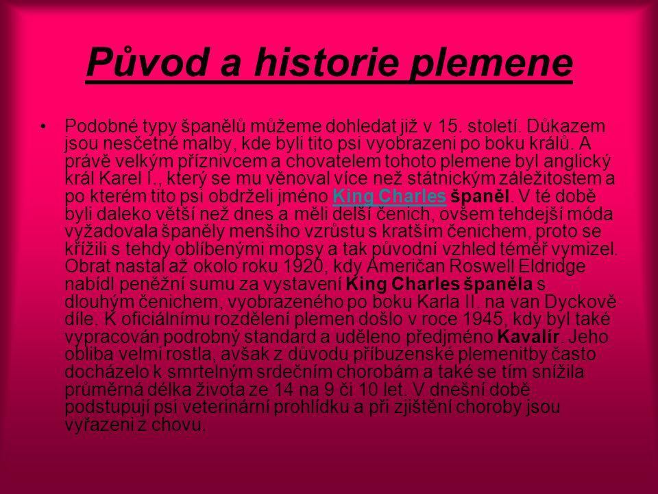 Původ a historie plemene Podobné typy španělů můžeme dohledat již v 15.