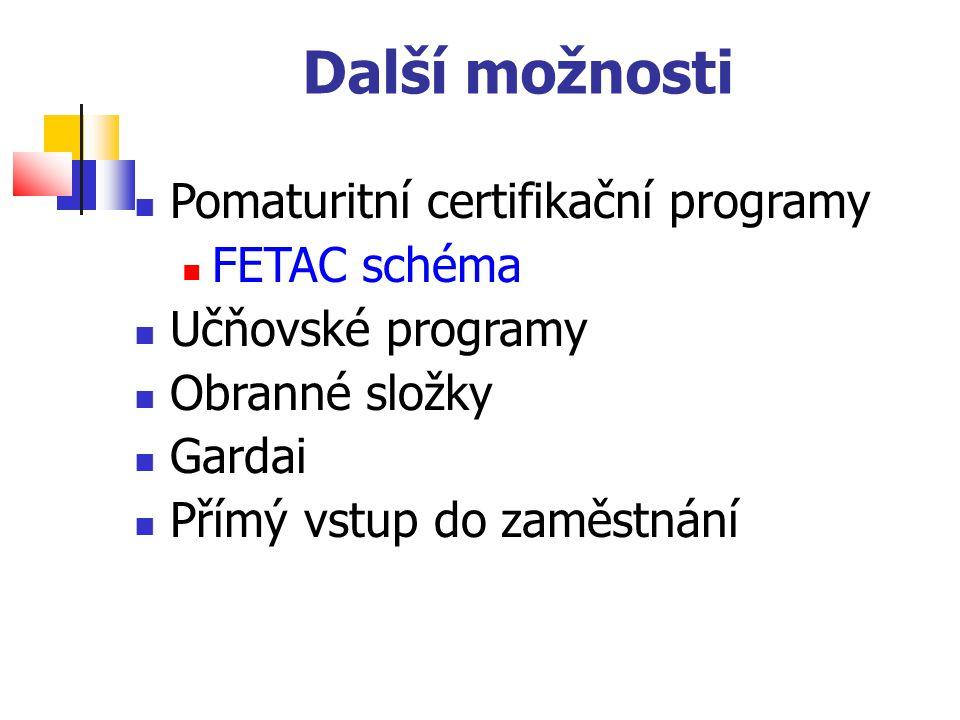 Další možnosti Pomaturitní certifikační programy FETAC schéma Učňovské programy Obranné složky Gardai Přímý vstup do zaměstnání
