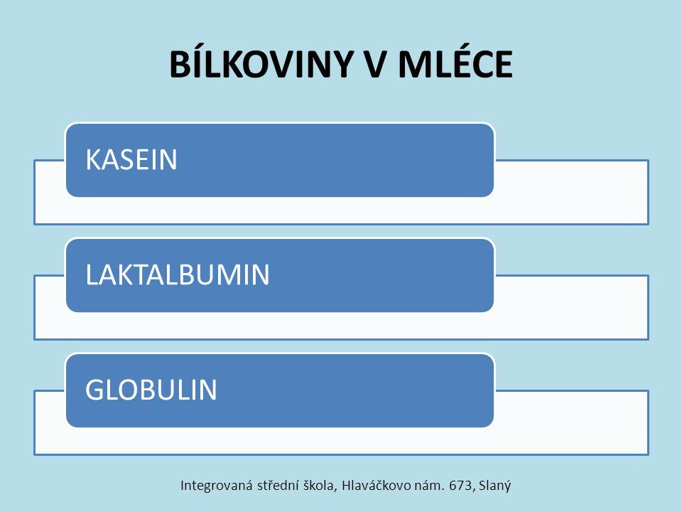 BÍLKOVINY V MLÉCE KASEINLAKTALBUMINGLOBULIN Integrovaná střední škola, Hlaváčkovo nám. 673, Slaný