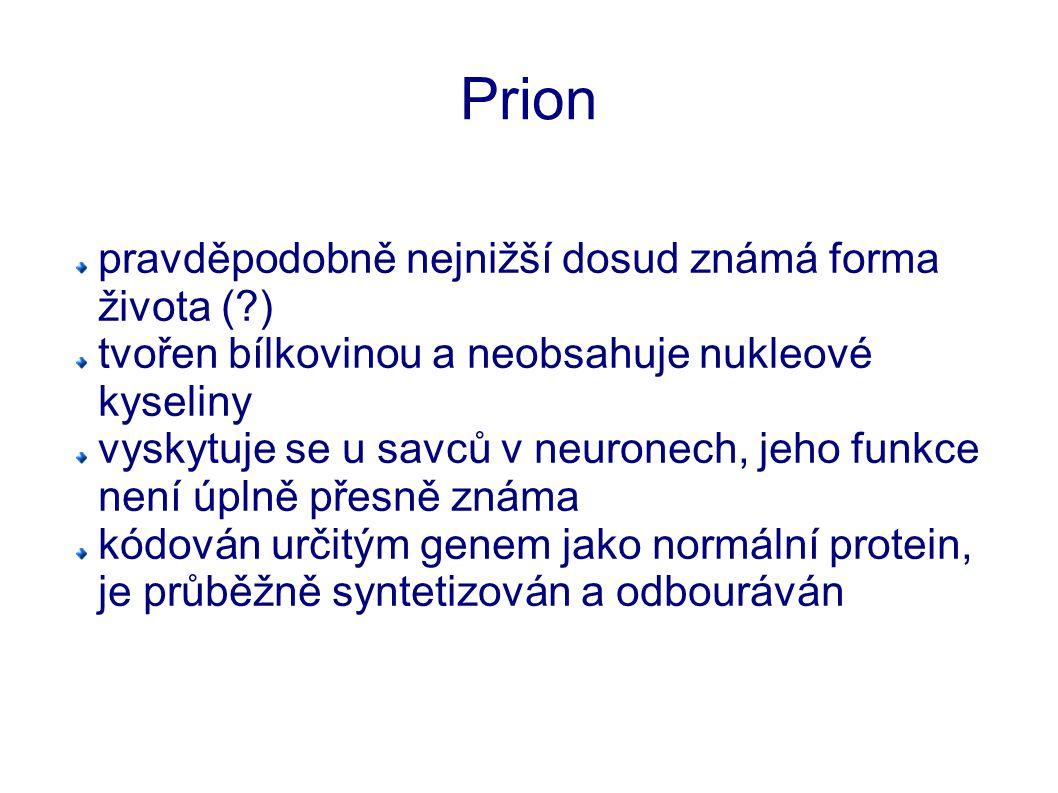 Infekční prion změnou konformace (prostorového uspořádání) se z normálního prionu stává tzv.