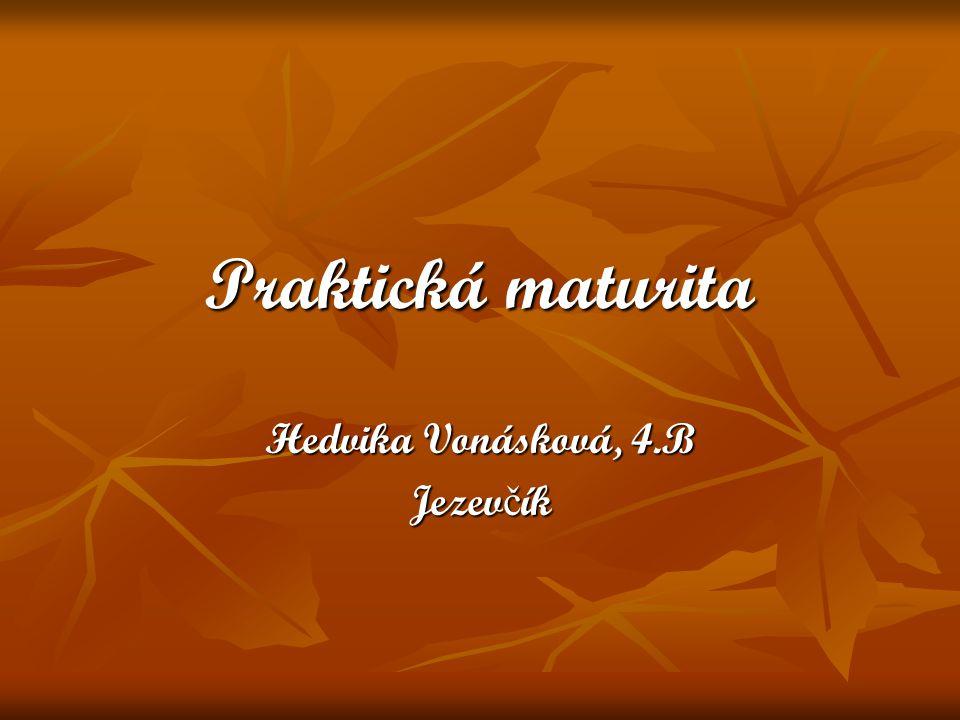 Praktická maturita Hedvika Vonásková, 4.B Jezev č ík