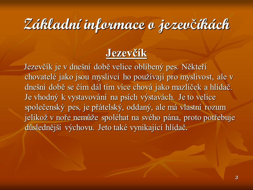 14 Ven č ení Jezevčík je sice malý, ale rozhodně ne pokojový psík.