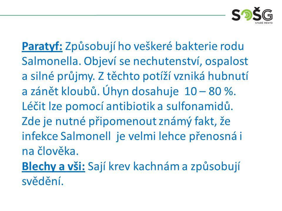 Paratyf: Způsobují ho veškeré bakterie rodu Salmonella.
